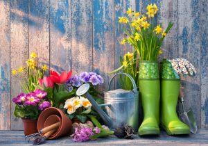 Oprema za baštu