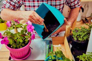 Plastični program za cveće